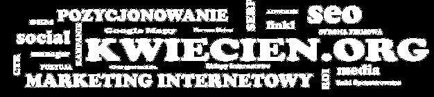 Marketing Internetowy - Pozycjonowanie stron Internetowych